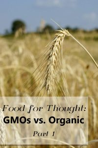 Image of a wheat stalk with text overlay that reads: food for thought gmo vs organic pt 1